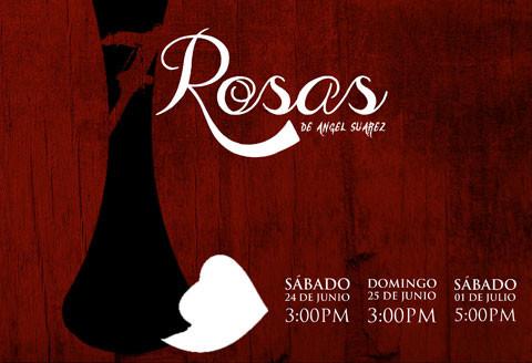 7 Rosas